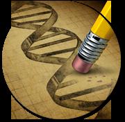 DNA streng